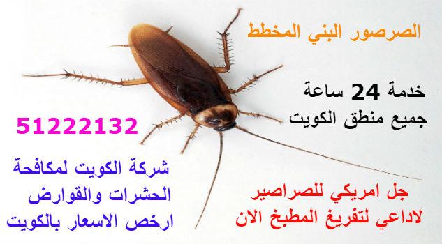 مكافح حشرات