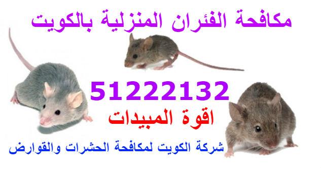 مكافحة الفئران- القوارض