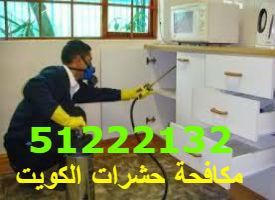 مكافحة حشرات المنزل الكويت