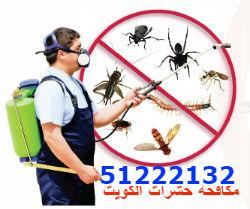 مكافحة حشرات بالكويت