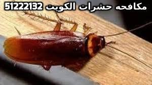 التخلص من الصراصير للابد في الكويت 51222132