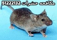 مكافحة القوارض بدولة الكويت 51222132