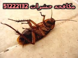شركه مكافحه حشرات حولى بالكويت 51222132