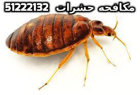 علاج قرصة البق في الكويت 51222132