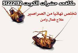رقم مكافحة القوارض الكويت 51222132
