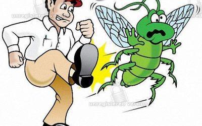 مكافحة النمل بالكويت 51222132