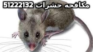 مكافحة الجرذان في الكويت 51222132