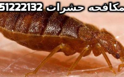 مكافحة العتة فى الجدار بالكويت 51222132