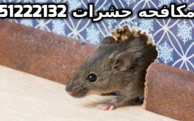 المبيدات الحشرية بالكويت 51222132