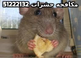 التخلص من الحشرات المنزلية في الكويت 51222132