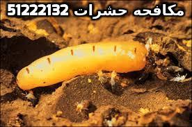 مبيد حشري قوي في الكويت 51222132
