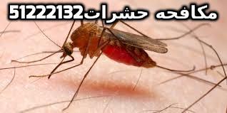 افضل حل للبعوض في الكويت 51222132