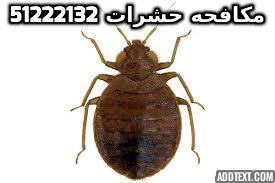 مبيد حشرات في الكويت 51222132