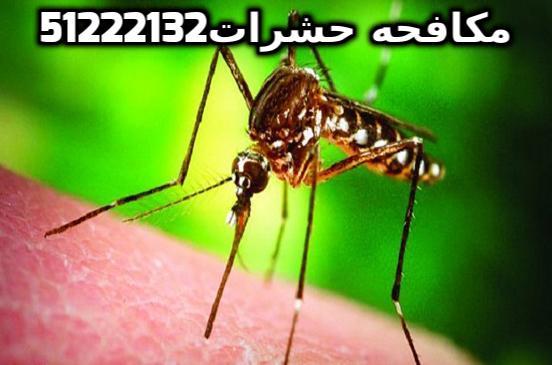 وسائل مكافحة البعوض باختصار بالكويت 51222132